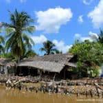 farm-im-mekong-delta-vietnam