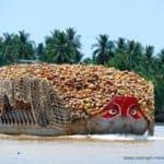 frachtschiff-kokusnuss-mekong-delta-vietnam