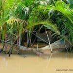 Fischernetz im Mekong Delta Vietnam
