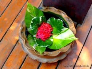 vietnam-reise-bericht-foto16