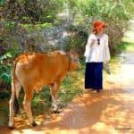 vietnam-reise-bericht-foto162