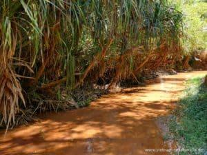 vietnam-reise-bericht-foto177