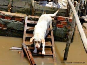 vietnam-reise-bericht-foto199