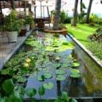 vietnam-reise-bericht-foto22