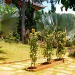vietnam-reise-bericht-foto248