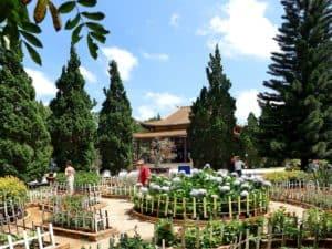 vietnam-reise-bericht-foto273