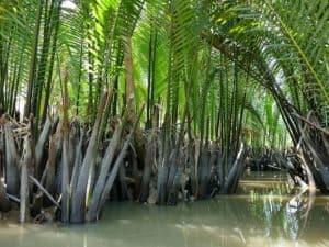 vietnam-reise-bericht-foto276