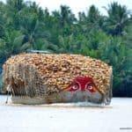vietnam-reise-bericht-foto279