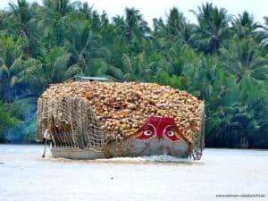 Kokus auf dem Mekong Delta