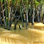 vietnam-reise-bericht-foto284