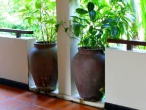 vietnam-reise-bericht-foto41